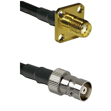 SMA 4 Hole Female on RG142 to C Female Cable Assembly