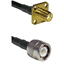 SMA 4 Hole Female on RG142 to C Male Cable Assembly