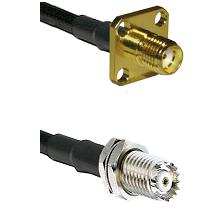 SMA 4 Hole Female on RG142 to Mini-UHF Female Cable Assembly
