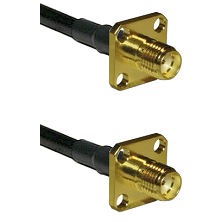 SMA 4 Hole Female on Belden 83242 RG142 to SMA 4 Hole Female Cable Assembly