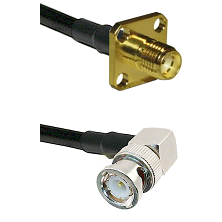 SMA 4 Hole Female on LMR-195-UF UltraFlex to BNC Right Angle Male Cable Assembly