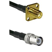 SMA 4 Hole Female on LMR-195-UF UltraFlex to BNC Reverse Polarity Female Cable Assembly