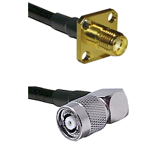 SMA 4 Hole Female on LMR-195-UF UltraFlex to TNC Reverse Polarity Right Angle Male Coaxial Cable Ass