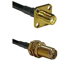 SMA 4 Hole Female on LMR-195-UF UltraFlex to SMA Reverse Polarity Female Bulkhead Coaxial Cable Asse