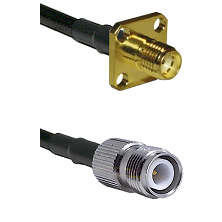 SMA 4 Hole Female on LMR-195-UF UltraFlex to TNC Reverse Polarity Female Cable Assembly
