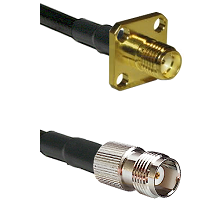 SMA 4 Hole Female on LMR-195-UF UltraFlex to TNC Female Cable Assembly