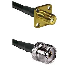 SMA 4 Hole Female on LMR-195-UF UltraFlex to UHF Female Cable Assembly