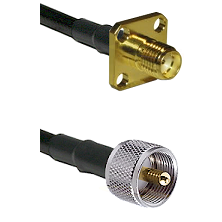 SMA 4 Hole Female on LMR-195-UF UltraFlex to UHF Male Cable Assembly