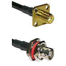 SMA 4 Hole Female on LMR200 UltraFlex to C Female Bulkhead Cable Assembly