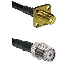 SMA 4 Hole Female on LMR200 UltraFlex to Mini-UHF Female Cable Assembly