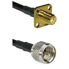 SMA 4 Hole Female on LMR200 UltraFlex to Mini-UHF Male Cable Assembly