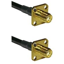 SMA 4 Hole Female on RG188 to SMA 4 Hole Female Cable Assembly