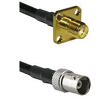 SMA 4 Hole Female on RG400 to BNC Female Cable Assembly
