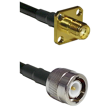 SMA 4 Hole Female on RG400 to C Male Cable Assembly