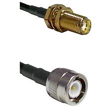 SMA Female Bulkhead on LMR-195-UF UltraFlex to C Male Cable Assembly