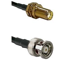 SMA Female Bulkhead on LMR-195-UF UltraFlex to BNC Reverse Polarity Male Cable Assembly