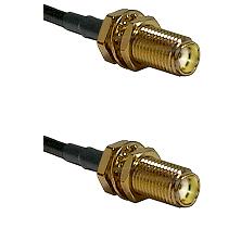 SMA Female Bulkhead on LMR-195-UF UltraFlex to SMA Female Bulkhead Cable Assembly