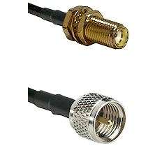 SMA Female Bulkhead on RG142 to Mini-UHF Male Cable Assembly