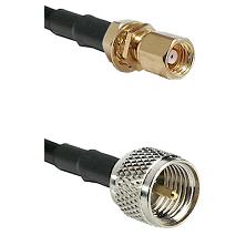 SMC Female Bulkhead on LMR100 to Mini-UHF Male Cable Assembly