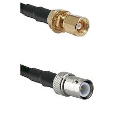 SMC Female Bulkhead on RG58C/U to BNC Reverse Polarity Female Cable Assembly