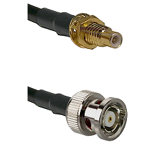 SMC Male Bulkhead on LMR-195-UF UltraFlex to BNC Reverse Polarity Male Cable Assembly