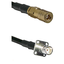 SSLB Female on LMR100 to BNC 4 Hole Female Cable Assembly