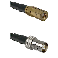SSLB Female on LMR100 to C Female Cable Assembly
