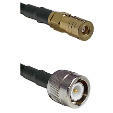 SSLB Female on LMR100 to C Male Cable Assembly