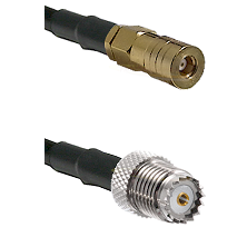SSLB Female on LMR100 to Mini-UHF Female Cable Assembly