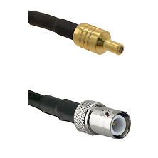 SSLB Male on LMR100 to BNC Reverse Polarity Female Cable Assembly