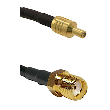 SSLB Male on LMR100 to SMA Reverse Thread Female Cable Assembly
