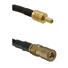 SSLB Male on LMR100/U to SSLB Female Cable Assembly