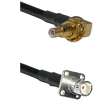 SSLB Male Bulkhead on LMR100 to BNC 4 Hole Female Cable Assembly