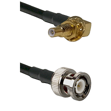 SSLB Male Bulkhead on LMR100 to BNC Male Cable Assembly