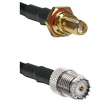 SSMA Female Bulkhead on LMR100/U to Mini-UHF Female Cable Assembly