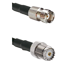 TNC Female on RG142 to Mini-UHF Female Cable Assembly