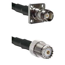 TNC 4 Hole Female on LMR100 to Mini-UHF Female Cable Assembly