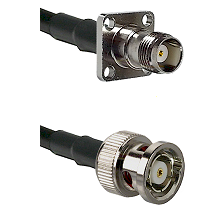 TNC 4 Hole Female on LMR-195-UF UltraFlex to BNC Reverse Polarity Male Cable Assembly