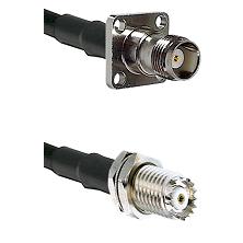TNC 4 Hole Female on RG142 to Mini-UHF Female Cable Assembly