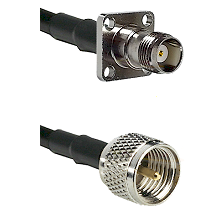TNC 4 Hole Female on RG142 to Mini-UHF Male Cable Assembly