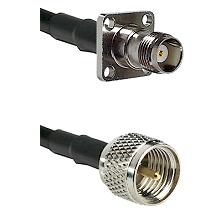 TNC 4 Hole Female on RG58C/U to Mini-UHF Male Cable Assembly