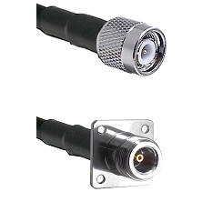 TNC Male on LMR100 to N 4 Hole Female Cable Assembly