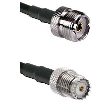 UHF Female on LMR200 UltraFlex to Mini-UHF Female Cable Assembly