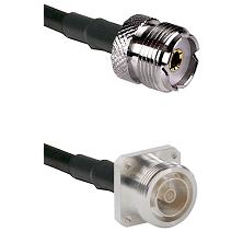 UHF Female on RG142 to 7/16 4 Hole Female Cable Assembly