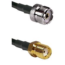 UHF Female on RG58C/U to SMA Reverse Thread Female Cable Assembly